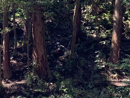 サバゲーフィールドGARDEN-Z 5月23日(日)定例会NO.3