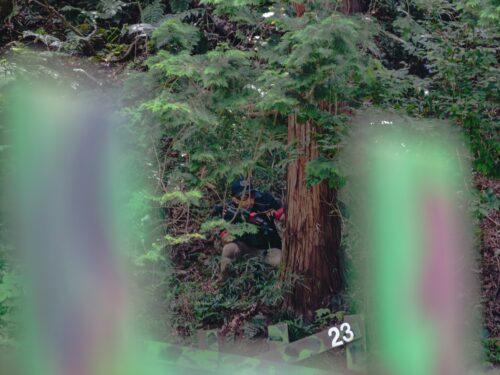 サバゲーフィールドGARDEN-Z 7月17日(土)定例会NO.3