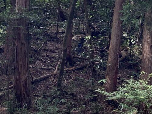 サバゲーフィールドGARDEN-Z 海老江様貸切NO.2